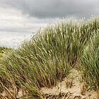 Walking Through the Dunes - Maghera Beach, Ireland by Lexa Harpell