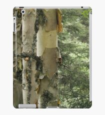 Paper Birches iPad Case/Skin
