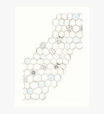 Abstract Water Turtle Squad Art Print