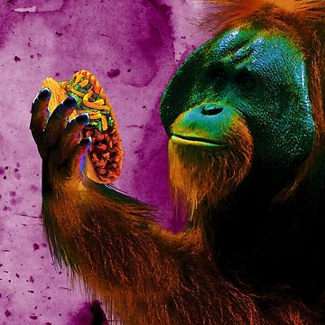 Orangutan's Taco Lunch by haylith