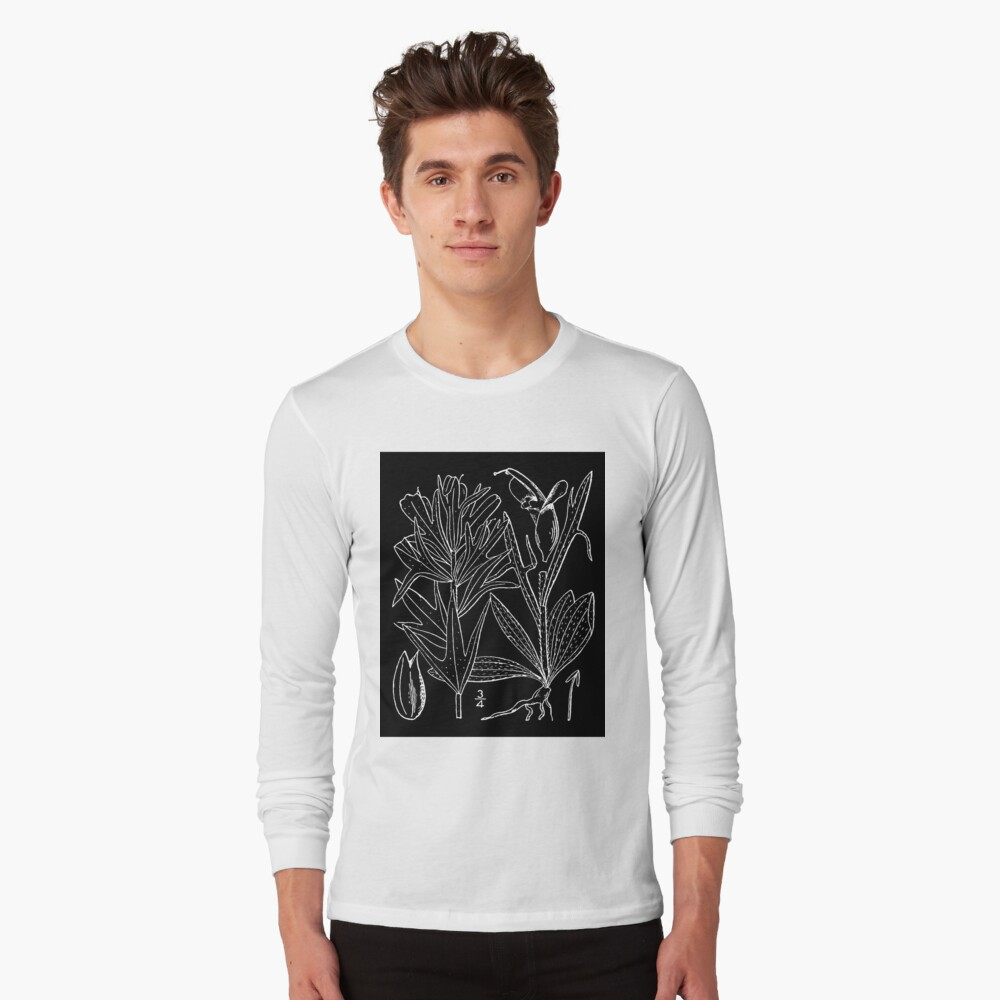 Britton And Brown Illustrated flora of the northern states and Canada 0407 Castilleja coccinea drawing Langarmshirt