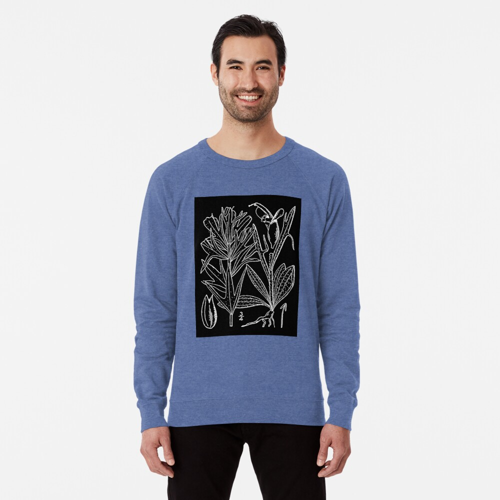 Britton And Brown Illustrated flora of the northern states and Canada 0407 Castilleja coccinea drawing Leichter Pullover