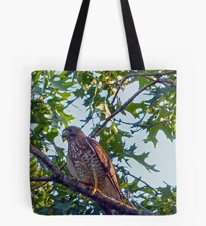 Broadwing Hawk Tote Bag