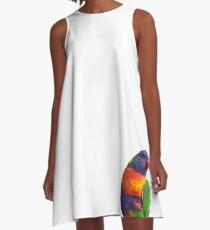 Rainbow Lorikeet A-Line Dress