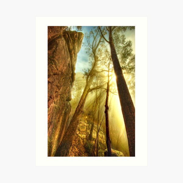 Clearing mist, Mount Buffalo Art Print