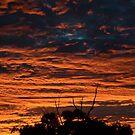 Fiery Australian orange sunset by sledgehammer