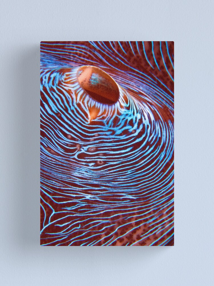 Alternate view of Hyperspace Canvas Print