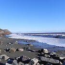 Coastal View Bay Shore by Martha Medford