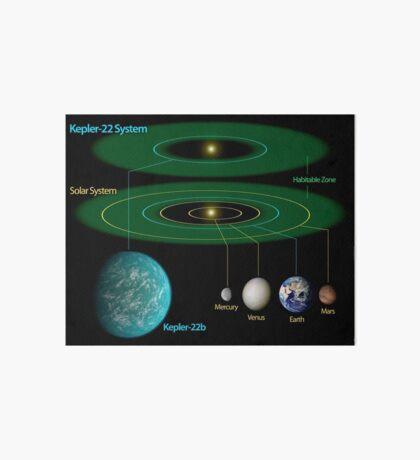 Dieses Diagramm vergleicht unser eigenes Sonnensystem mit Kepler-22. Galeriedruck