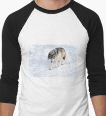 Winter Wolf Walk _ Timber Wolf Men's Baseball ¾ T-Shirt