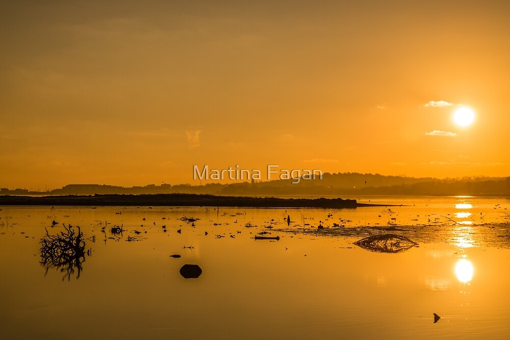Saturday Morning along the estuary  by Martina Fagan