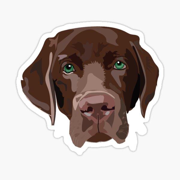 chocolate lab Sticker