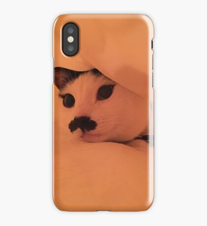 Cat Cave iPhone Case