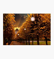 Avenue to the Castle Photographic Print