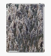 Old reed grass on a winter day. iPad Case/Skin