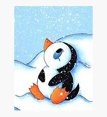 Antarctic Flurry Photographic Print
