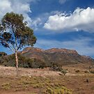 Wilpena Pound South Australia by johnrf