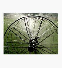 Sprinklers  - Light Photographic Print