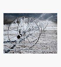 Sprinklers - Frozen  Photographic Print