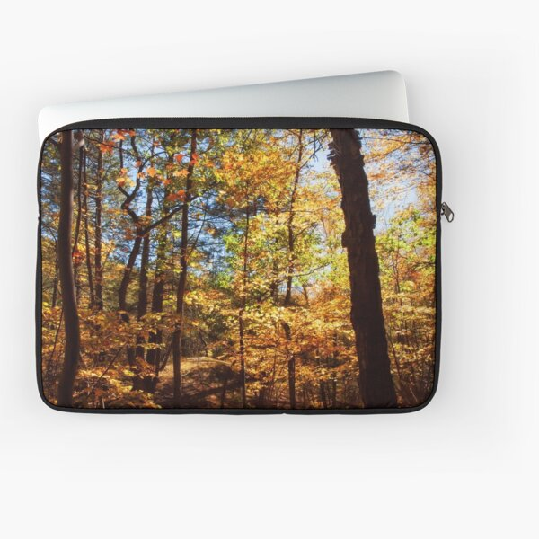 The Forest in Fall Laptop Sleeve