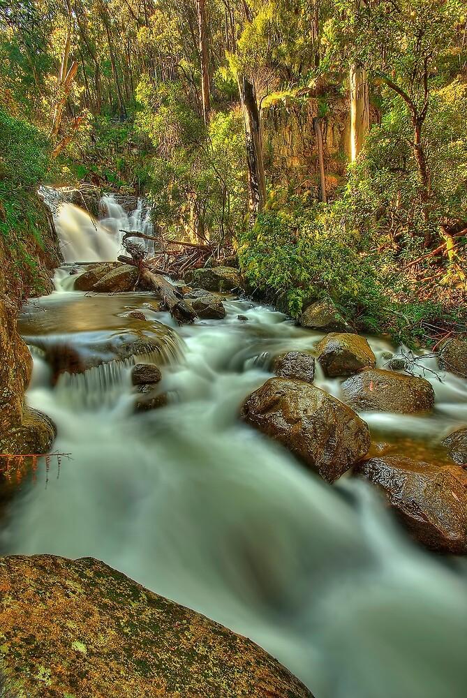 Nigothoruk Creek, Alpine National Park by Kevin McGennan