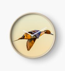 Pintail sunset Clock