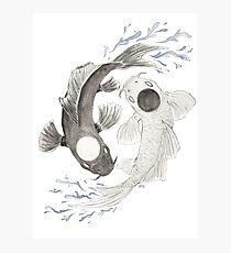Yin Yang Photographic Print