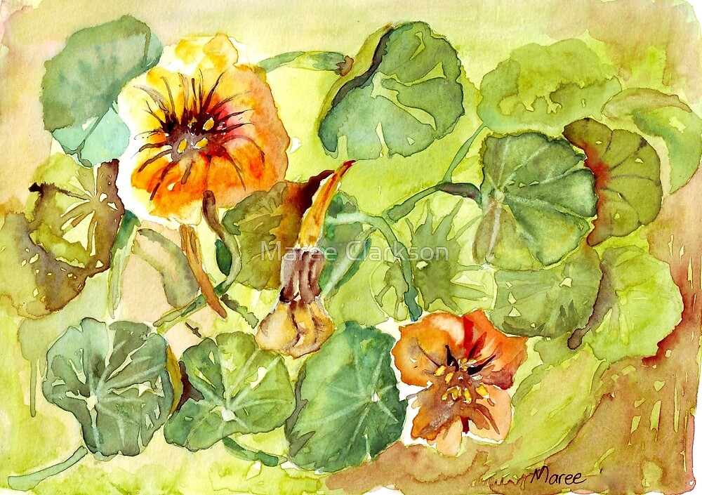 My Flowers and I by Maree Clarkson