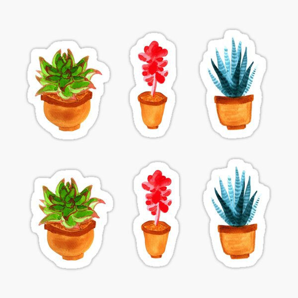 Watercolour Succulents Stickers Sticker