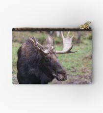 Large moose in a forest Studio Pouch