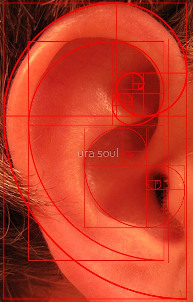 Phi, Ear and Spirals by ura soul
