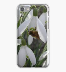 A blessing for the winter bees iPhone Case/Skin