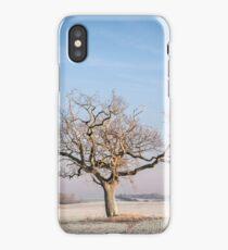 Frosty morning iPhone Case/Skin