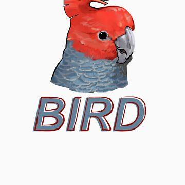 BIRD - Gang Gang Cockatoo (Male) by Sadgi