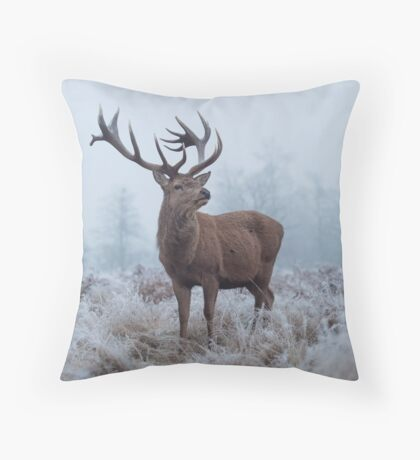 Monarch in a field of white Throw Pillow