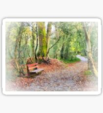 The way through the woods, JFK Memorial Arboretum, Co. Wexford, Ireland Sticker
