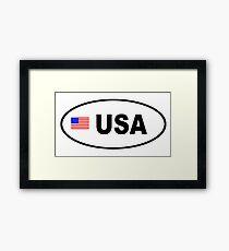 USA - BUMPER STICKER Framed Print