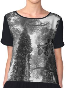 Look up - and up and up! Women's Chiffon Top