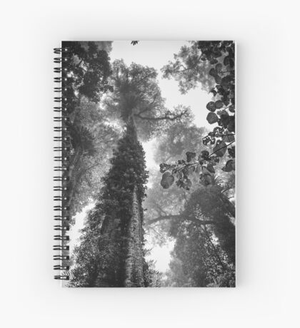 Look up - and up and up! Spiral Notebook