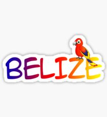BELIZE TROPICAL PARROT CARIBBEAN SEA TRAVEL OCEAN BEACH VACATION Sticker