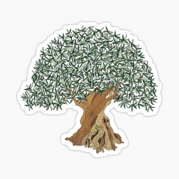 1110 Years Old Olive Tree Sticker
