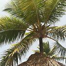 Punta Cana  by WaleskaL
