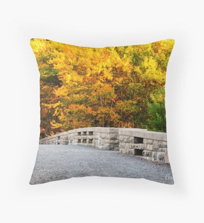 The Glory of Fall at Acadia Throw Pillow