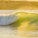 Green and gold by Angela Lisman-Photography