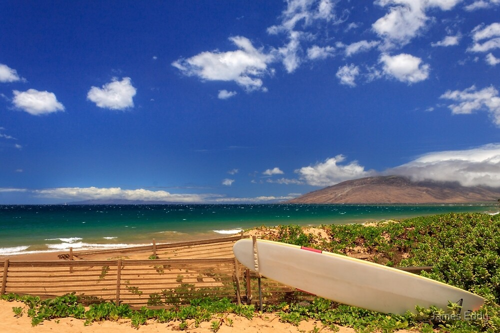 Lonely Surfboard by James Eddy