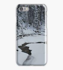 A step into Narnia iPhone Case/Skin