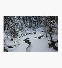 A step into Narnia Photographic Print