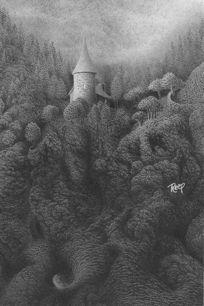Where Dragons Sleep by Mark  Reep