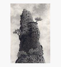 Falconer's Folly Photographic Print