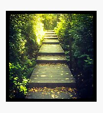 Path to the Light Photographic Print